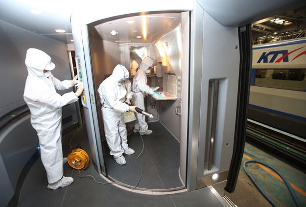 Jak podaje Światowa Organizacja Zdrowia (WHO), 38 proc. zakażonych wirusem MERS umiera /AFP