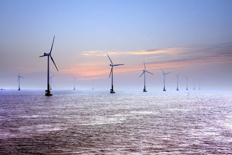 Jak pomieścić farmy wiatrowe na Bałtyku? /123RF/PICSEL