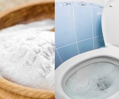 Jak pozbyć się osadu z toalety? Niezawodne sposoby