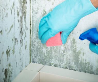 Jak pozbyć się wilgoci z łazienki i kuchni?