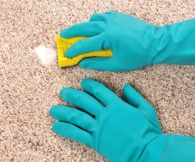 Jak profesjonalnie wyczyścić swój dywan?