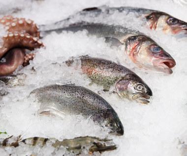 Jak przechowywać surowe ryby?