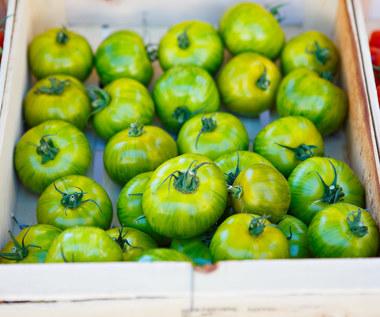 Jak przechowywać zielone pomidory?