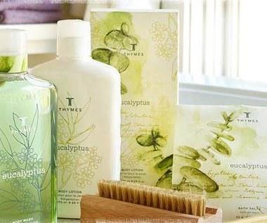 Jak przygotować aromatyczny eukaliptusowy prysznic?