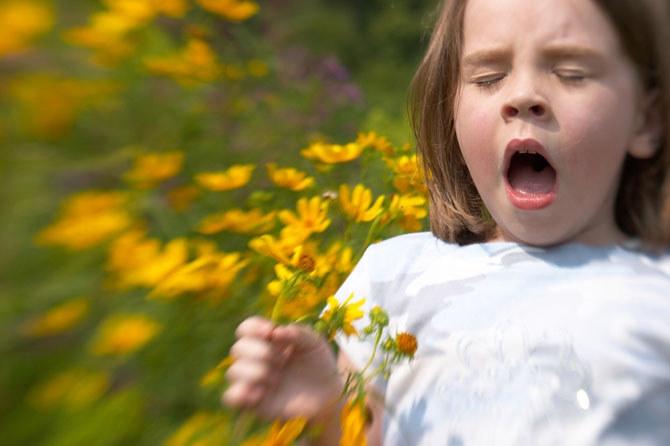 Jak radzić sobie z alergią /© Photogenica