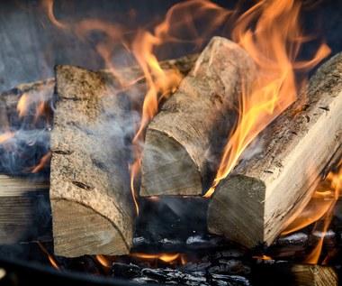 Jak rozpalić ognisko w czasie deszczu?