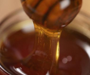 Jak rozpoznać prawdziwy miód? Oto niezawodne sposoby