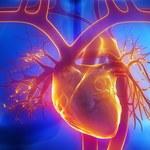 Jak rozpoznać problemy z krążeniem krwi?