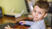 Jak rozwinąć inteligencję dziecka w wieku przedszkolnym i szkolnym?