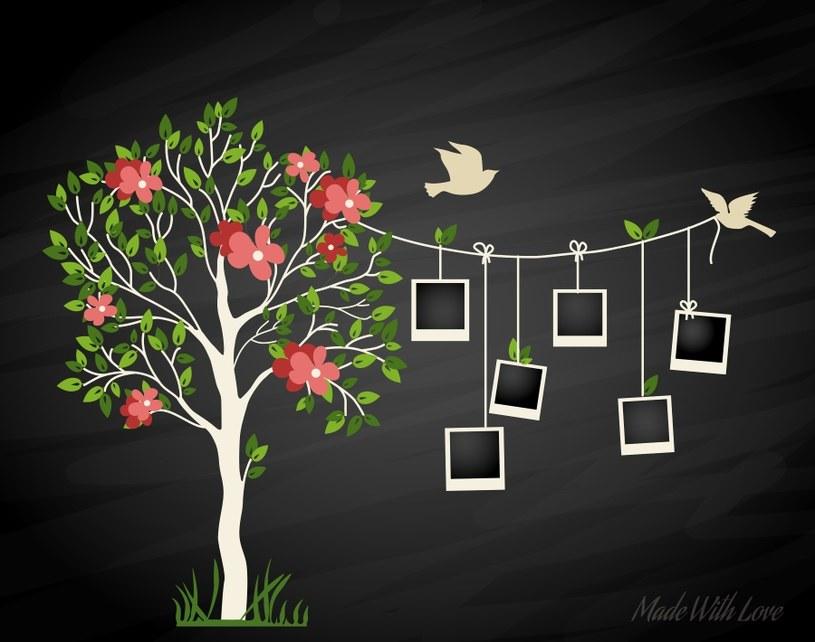 Jak rysować drzewo genealogiczne? /©123RF/PICSEL