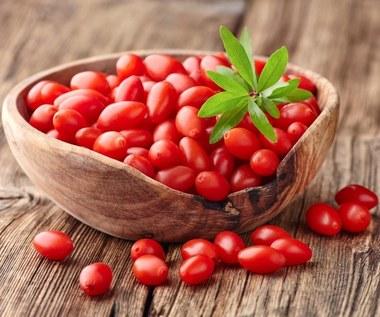 Jak samemu  uprawiać w ogródku jagody goji?