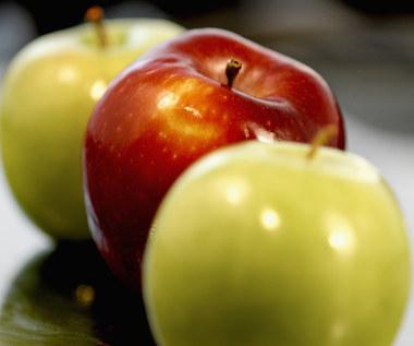 Jak się bawić w łapanie jabłek?