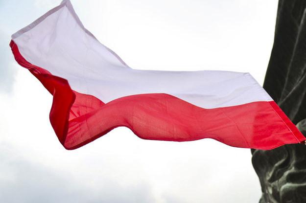 Jak się ma demokracja w Polsce? /Beata Zawrzel /Reporter