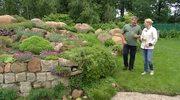 Jak się pozbyć z ogrodu turkucia podjadka?