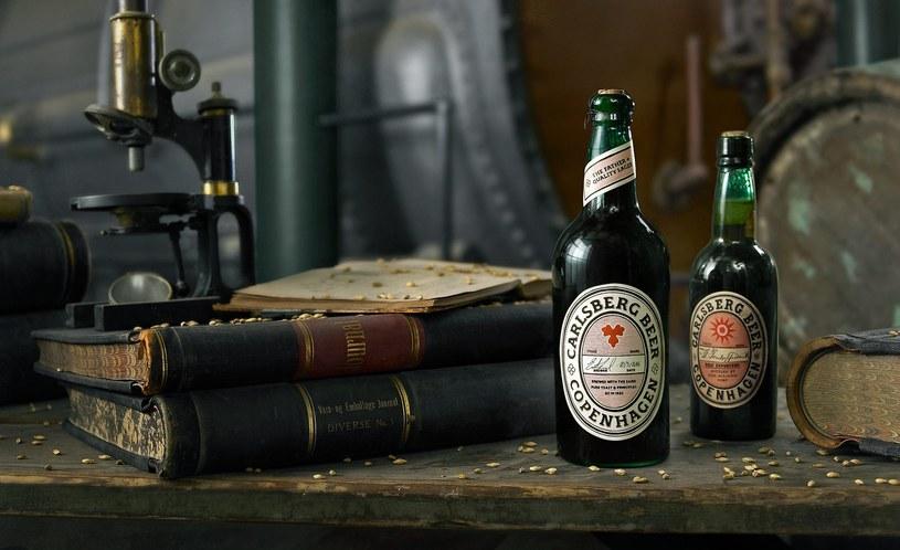 Jak smakowało piwo w XIX wieku? Być może już wkrótce się dowiemy... /materiały prasowe