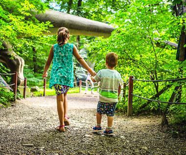 Jak spędzić aktywnie niedzielę z dziećmi?