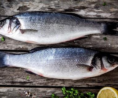 Jak sprawdzić, czy ryba, którą kupujemy, jest świeża?