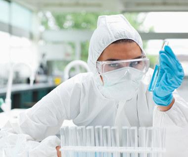 Jak sprawić, aby twój dom nie był toksyczny?