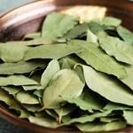 Jak stosować liście laurowe jako lek?