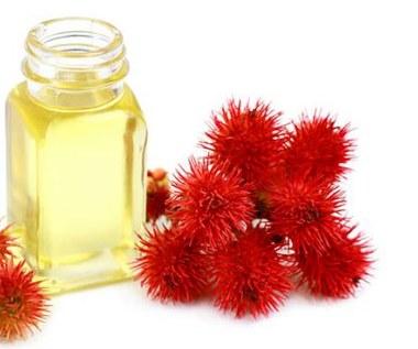 Jak stosować olej rycynowy do włosów, brwi i rzęs?