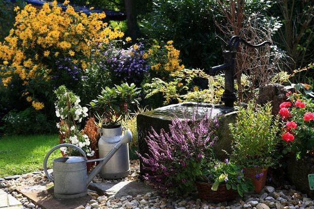 Jak stworzyć wymarzony ogród /© Panthermedia