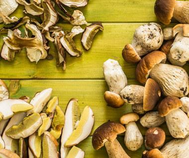 Jak suszyć grzyby? Sprawdzone metody