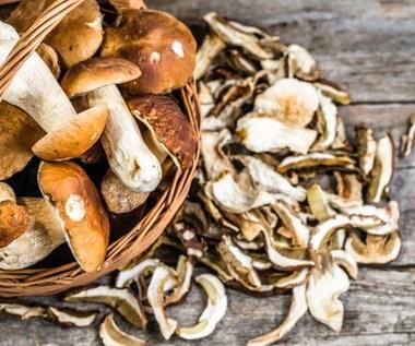 Jak suszyć grzyby? Sprawdzone sposoby