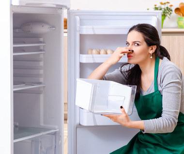Jak szybko umyć lodówkę i pozbyć się nieprzyjemnego zapachu?