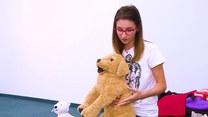 Jak udzielić pierwszej pomocy psu?