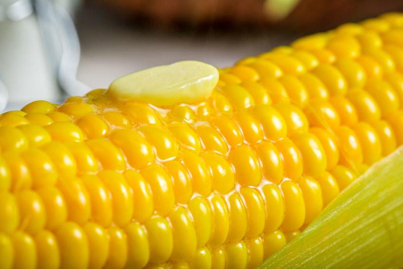 Jak ugotować kukurydzę, aby była miękka? /123RF/PICSEL