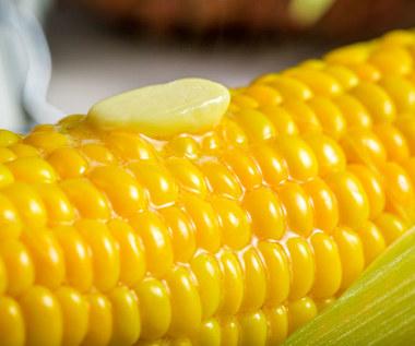 Jak ugotować kukurydzę, aby była miękka?