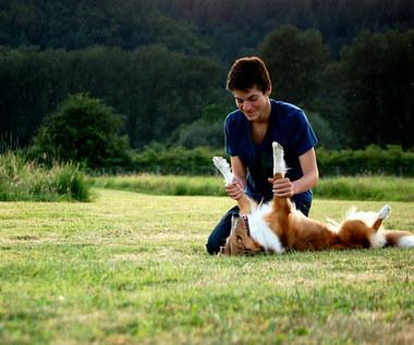 Jak ułatwić życie właścicielowi psa?
