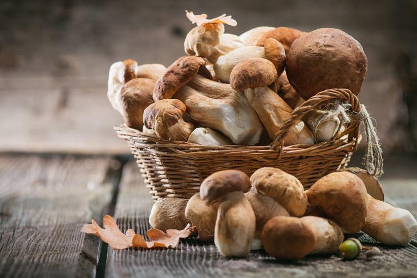 Jak uniknąć zatrucia grzybami? /©123RF/PICSEL