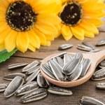 Jak uprażyć ziarna słonecznika na patelni i w piekarniku?