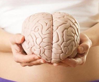 Jak usprawnić działanie twojego mózgu