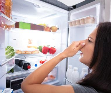 Jak usunąć brzydkie zapachy ze zmywarki, lodówki i innych miejsc w domu?