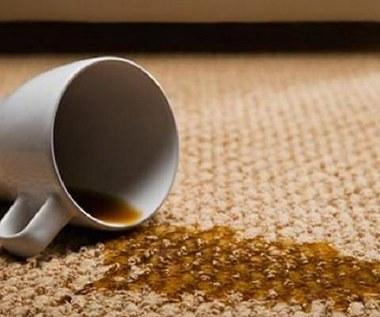 Jak usunąć plamy na dywanie za pomocą żelazka?