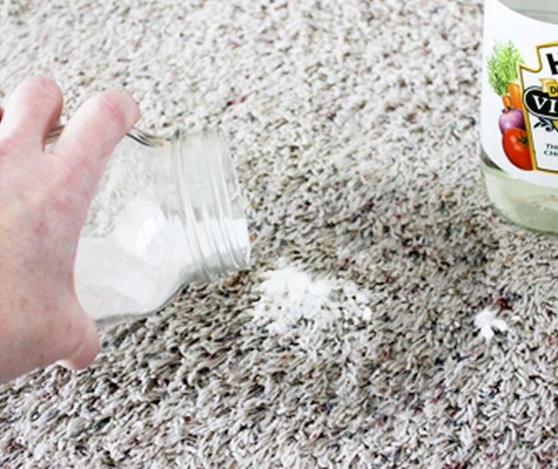 Jak usunąć plamy z moczu z dywanu krok 1 /© Photogenica