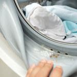 Jak usunąć pleśń z pralki?