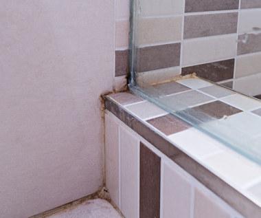 Jak usunąć pleśń z silikonu w kabinie prysznicowej?