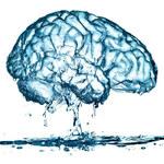 Jak właściwe nawodnienie wpływa na mózg i zdrowie psychiczne?