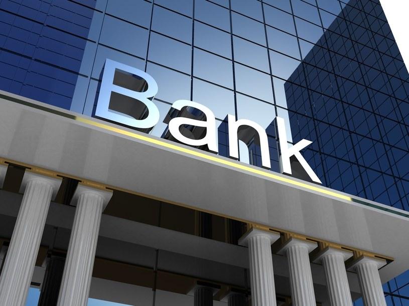 Jak wskazuje, banki przechodzą w tej chwili transformację i dostosowują swoje modele biznesowe do nowych warunków /123RF/PICSEL