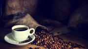 Jak wybrać dobrą kawę?