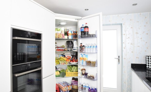 Jak wybrać najlepszą lodówkę do domu?
