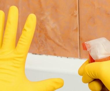 Jak wyczyścić łazienkę? Niezawodne sposoby