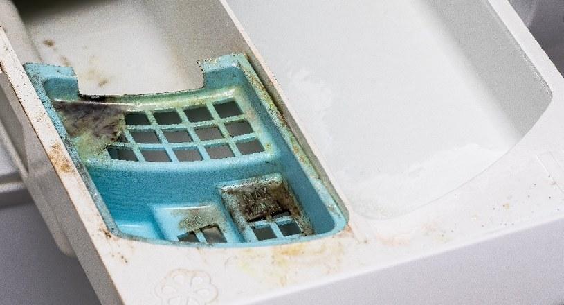 Jak wyczyścić pralkę z pleśni? /©123RF/PICSEL