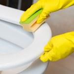 Jak wyczyścić toaletę na błysk? Niezawodne patenty