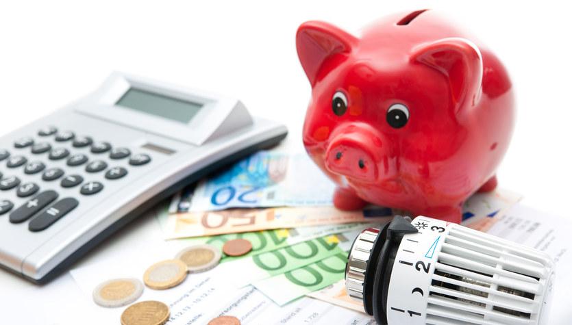 Jak wyeliminować zbędne wydatki i zaoszczędzić?