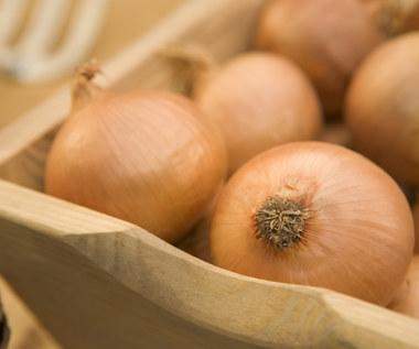 Jak wykorzystać cebulę w celach zdrowotnych?