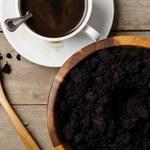 Jak wykorzystać kawę w ogrodzie?